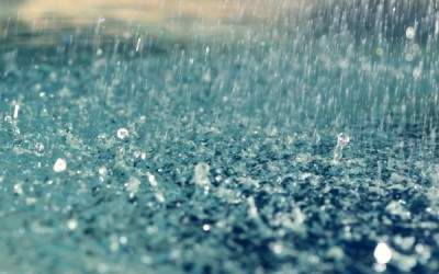 Có nên dùng nước mưa cho hồ Koi nhà bạn?