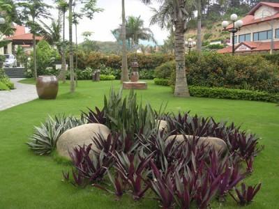 Cách bài trí sân vườn theo hướng nhà